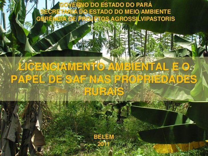 GOVERNO DO ESTADO DO PARÁ    SECRETARIA DO ESTADO DO MEIO AMBIENTE   GERÊNCIA DE PROJETOS AGROSSILVIPASTORIS LICENCIAMENTO...