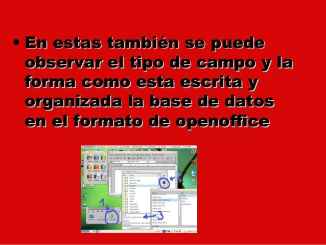 • En estas también se puede  observar el tipo de campo y la  forma como esta escrita y  organizada la base de datos  en el...