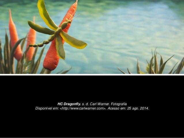HC Dragonfly. s. d. Carl Warner. Fotografia  Disponível em: <http://www.carlwarner.com>. Acesso em: 25 ago. 2014.