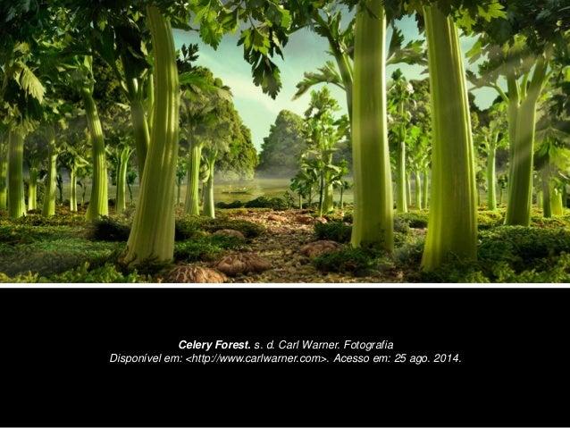 Celery Forest. s. d. Carl Warner. Fotografia  Disponível em: <http://www.carlwarner.com>. Acesso em: 25 ago. 2014.