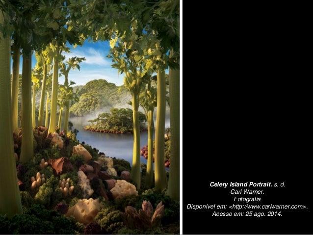 Celery Island Portrait. s. d. Carl Warner. Fotografia Disponível em: <http://www.carlwarner.com>. Acesso em: 25 ago. 2014.