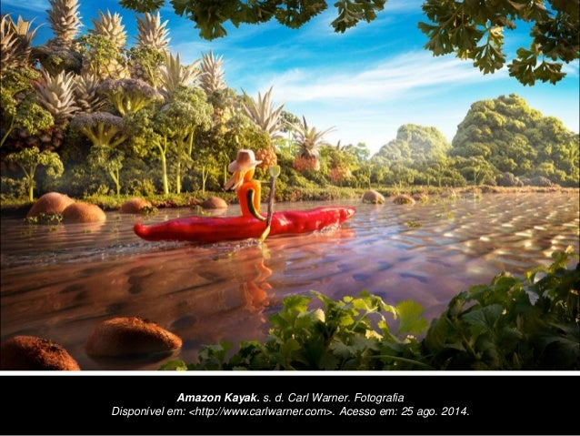 Amazon Kayak. s. d. Carl Warner. Fotografia Disponível em: <http://www.carlwarner.com>. Acesso em: 25 ago. 2014.