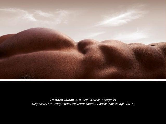 Pectoral Dunes. s. d. Carl Warner. Fotografia Disponível em: <http://www.carlwarner.com>. Acesso em: 26 ago. 2014.