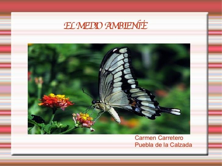 EL MEDIO AMBIENTE Carmen Carretero Puebla de la Calzada