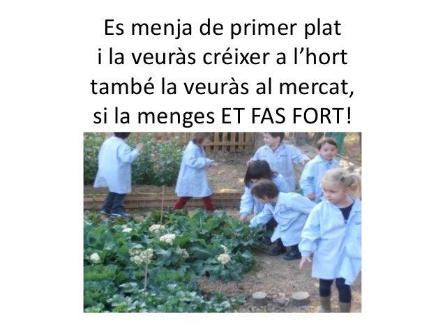 Es menja de primer plat i la veuràs créixer a l'horttambé la veuràs al mercat,si la menges ET FAS FORT!