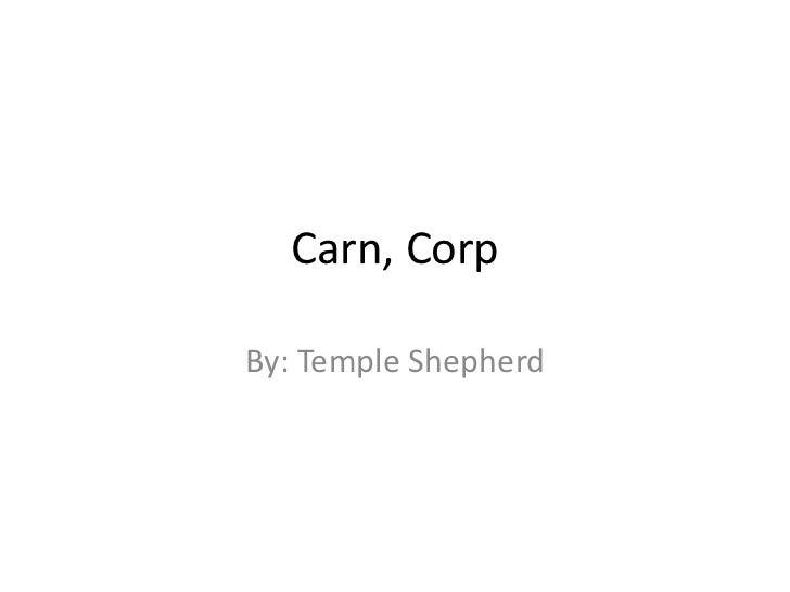 Carn, CorpBy: Temple Shepherd
