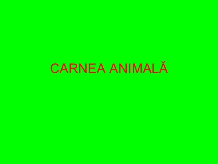CARNEA ANIMAL Ă