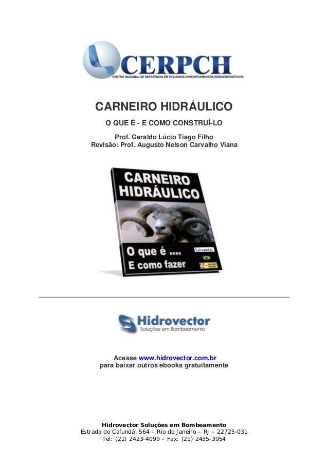 CARNEIRO HIDRÁULICO O QUE É - E COMO CONSTRUÍ-LO Prof. Geraldo Lúcio Tiago Filho Revisão: Prof. Augusto Nelson Carvalho Vi...
