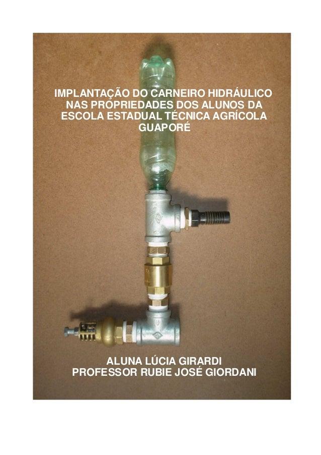 IMPLANTAÇÃO DO CARNEIRO HIDRÁULICO  NAS PROPRIEDADES DOS ALUNOS DA ESCOLA ESTADUAL TÉCNICA AGRÍCOLA             GUAPORÉ   ...