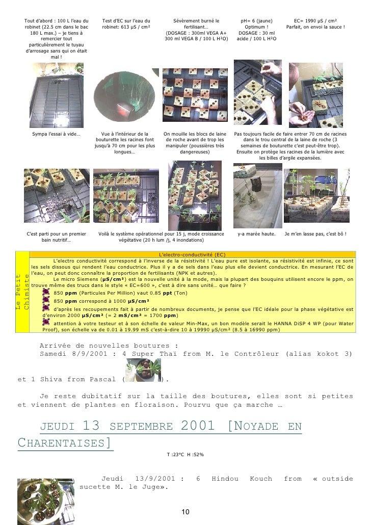 Carnet de culture hydroponique du cannabis for Culture de cannabis interieur
