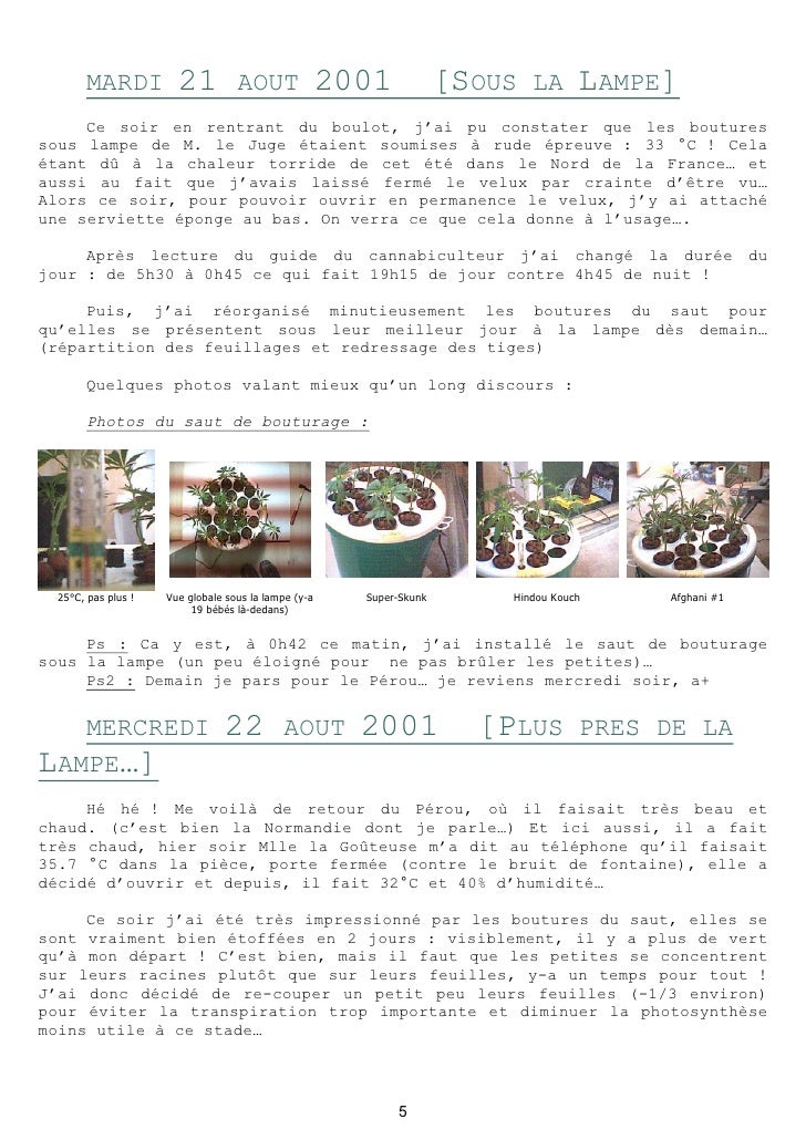 carnet de culture hydroponique du cannabis. Black Bedroom Furniture Sets. Home Design Ideas
