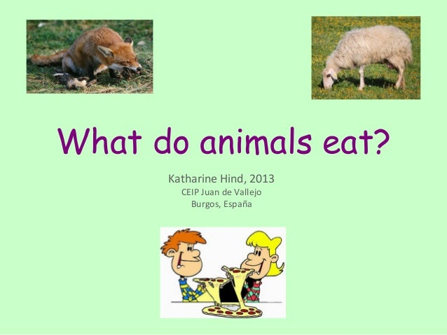 What do animals eat?      Katharine Hind, 2013        CEIP Juan de Vallejo          Burgos, España