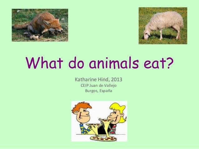Carnivores herbivores omnivores with examples.