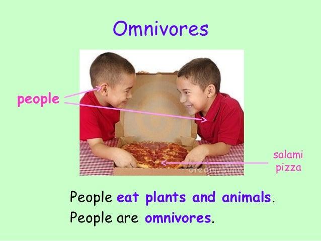 Herbivore carnivore omnivore animals youtube.