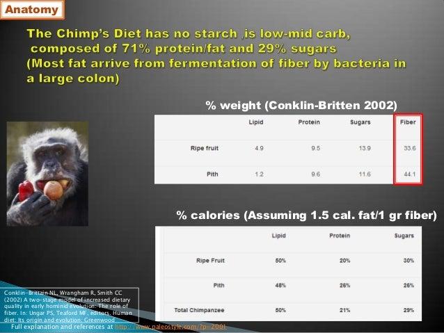 Carnivourus paleolithic diet   miki ben-dor ahs13 Slide 2