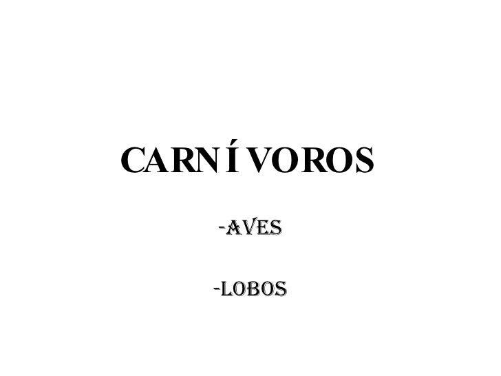 CARNÍVOROS <ul><li>AVES </li></ul><ul><li>-LOBOS </li></ul>