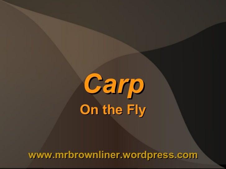 Carp On the Fly www.mrbrownliner.wordpress.com