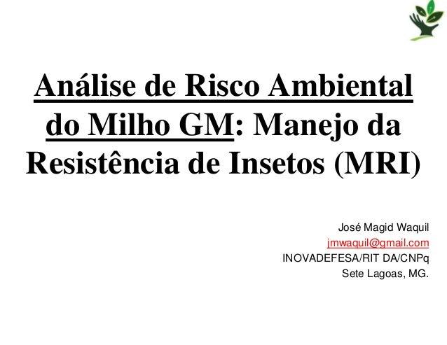 Análise de Risco Ambiental do Milho GM: Manejo daResistência de Insetos (MRI)                           José Magid Waquil ...