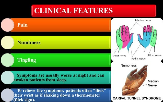 carpal tunnel syndrome, Human Body