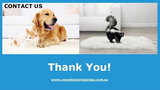 Budget Carpet Cleaning Melbourne