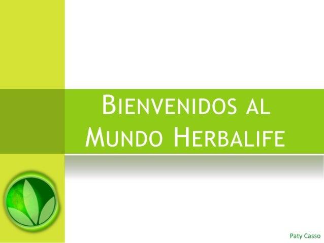 Carpeta De Presentacion Nutricion Interna
