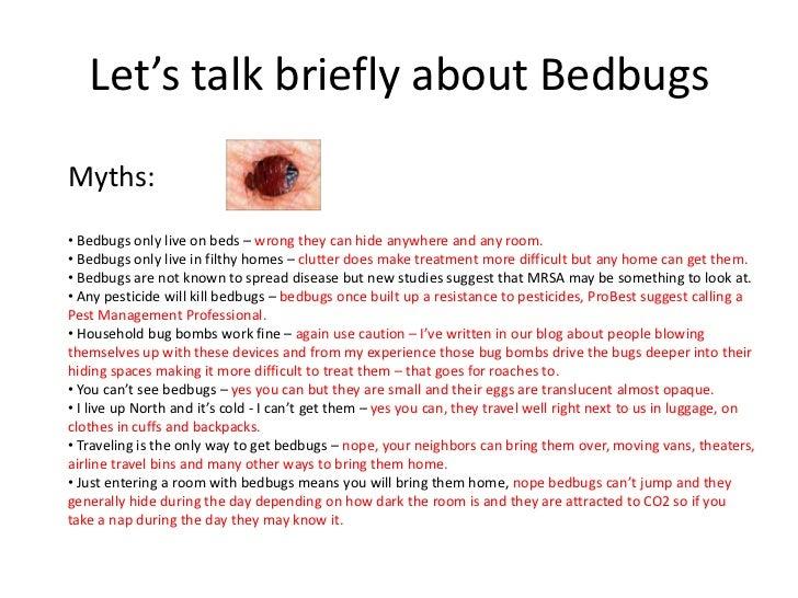 Bedbugs In Carpet Floor Matttroy