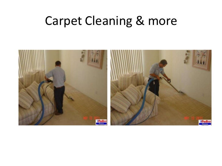 Do carpet cleaners kill bed bugs floor matttroy for Dry cleaning kill bed bugs
