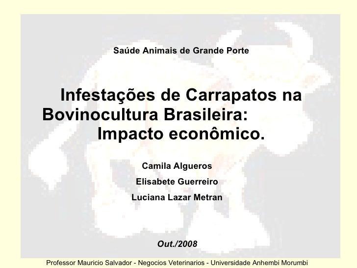 Infestações de Carrapatos na Bovinocultura Brasileira:  Impacto econômico. Saúde Animais de Grande Porte Camila Algueros E...