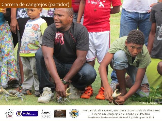 Imágenes  Manlio  Larotonda  Carrera  de  cangrejos   Intercambio  de  saberes,  economía  responsable...