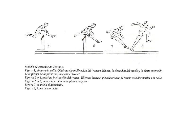 Carrera de vallas 1 - Imagen de vallas ...