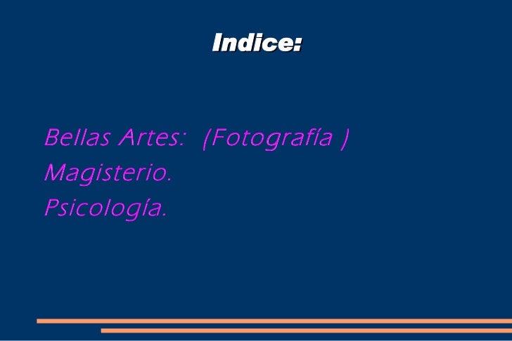 Indice: <ul><li>Bellas Artes:  (Fotografía )