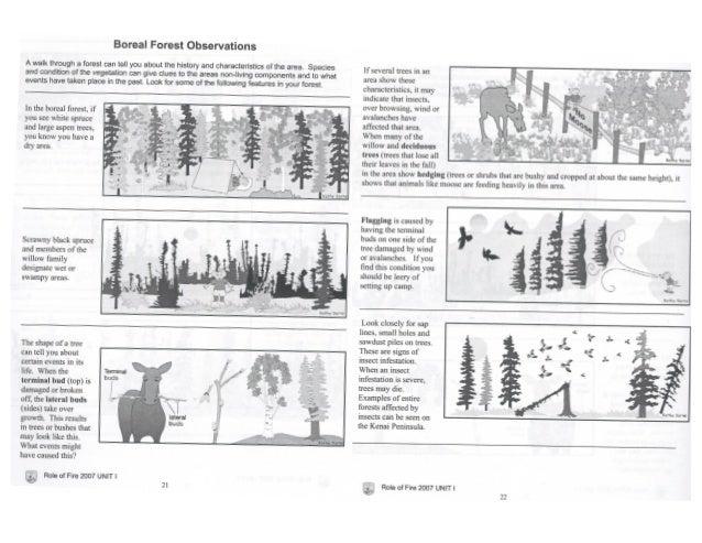 Carrie lesson plans-final-project.2