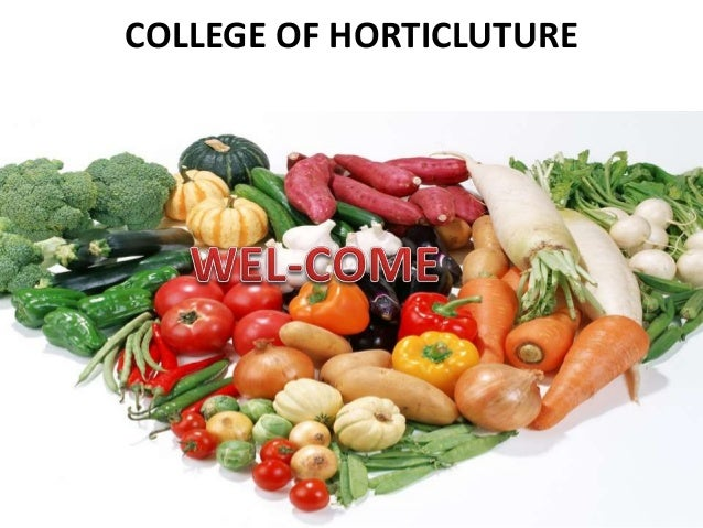 COLLEGE OF HORTICLUTURE