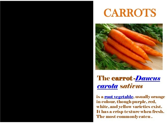 CARROTS The carrot -Daucus carota sativus is a root vegetable, usually orange in colour, though purple, red, white, and ye...