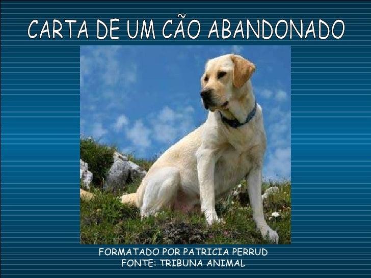 CARTA DE UM CÃO ABANDONADO FORMATADO POR PATRICIA PERRUD FONTE: TRIBUNA ANIMAL