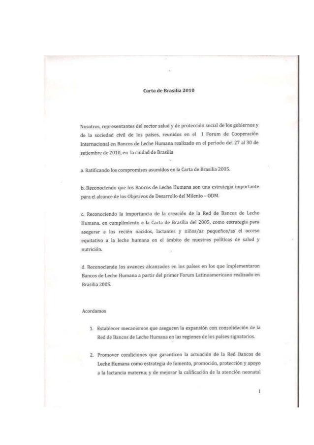 Carta de Brasilia 2010_esp