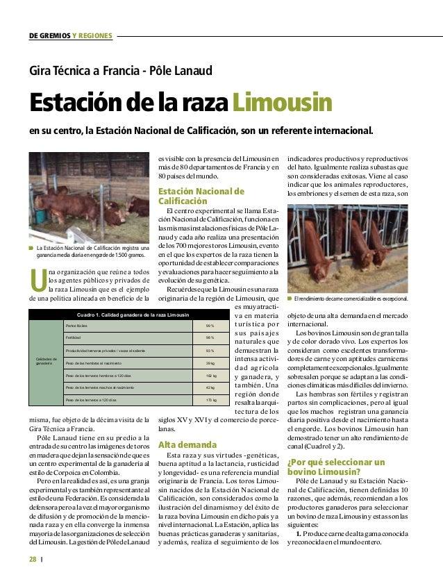 29 FEDERACIÓN COLOMBIANA DE GANADEROS carta fedegÁn N.° 149 3.50% 2. Fabrica caparazón sin rivales (el % bajo de hueso y d...