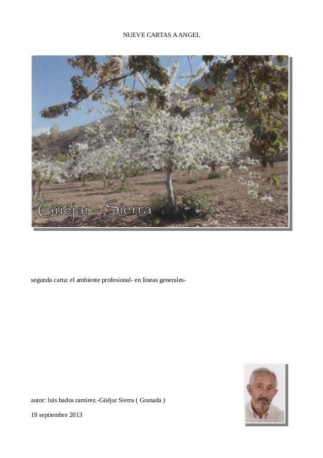 NUEVE CARTAS AANGEL segunda carta: el ambiente profesional- en lineas generales- autor: luis bados ramirez.-Güéjar Sierra ...