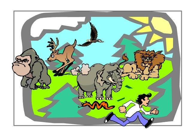 Os animais selvagens são os animais que vivem livremente nos montes, nas montanhas, nas serras, nas florestas, nas matas, ...