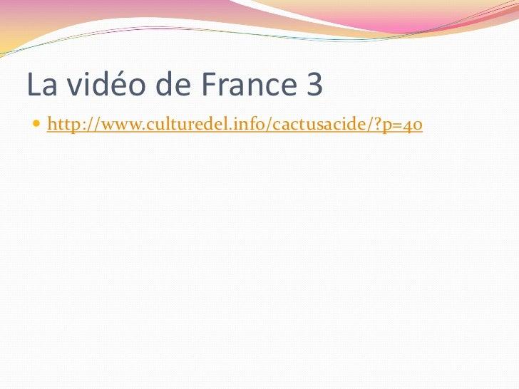 La vidéo de France 3<br />http://www.culturedel.info/cactusacide/?p=40<br />