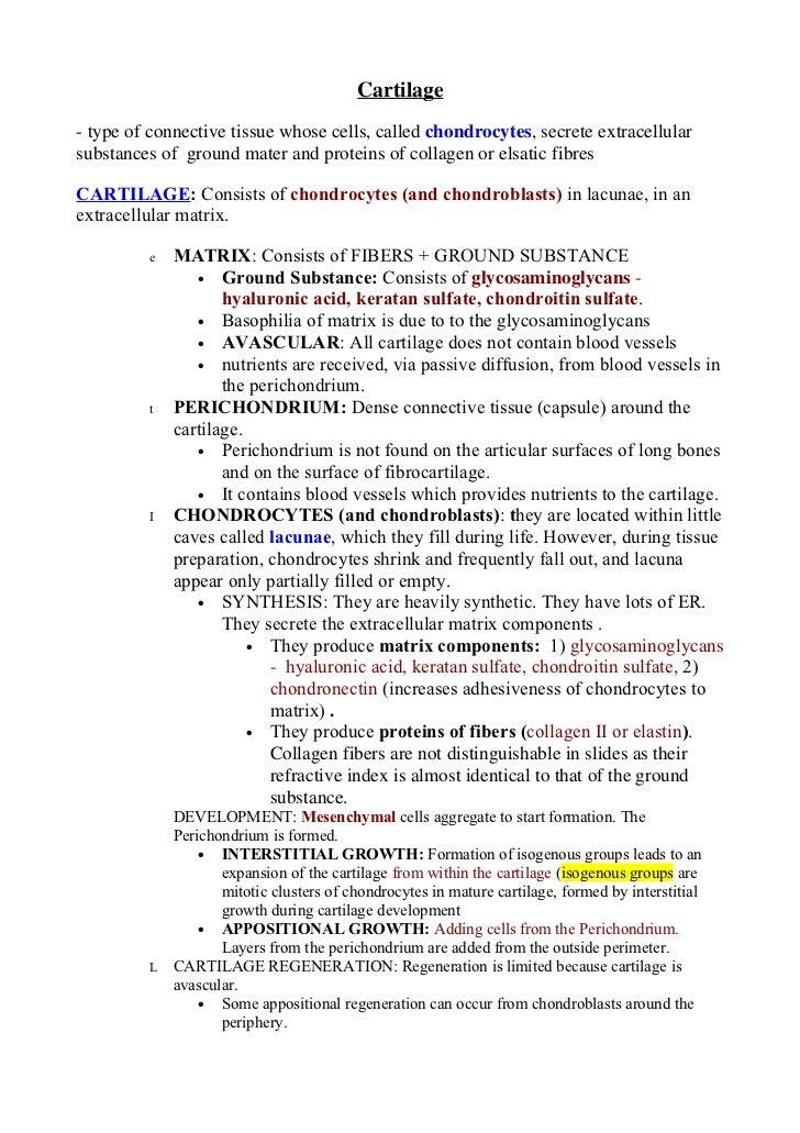 Cartilage, bone   copy
