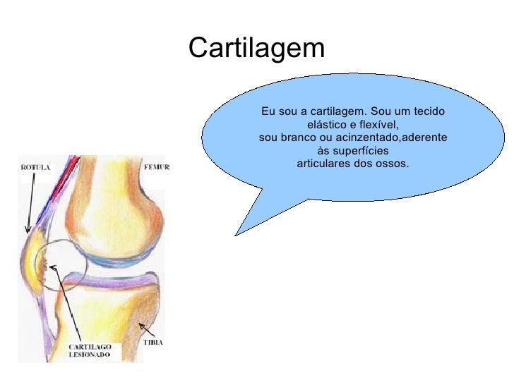 Cartilagem Eu sou a cartilagem. Sou um tecido elástico e flexível, sou branco ou acinzentado,aderente às superfícies artic...