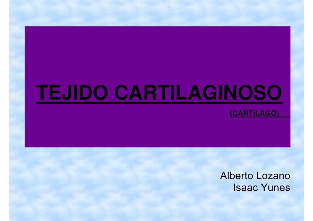 TEJIDO CARTILAGINOSO                (CARTíLAGO)                   Alberto Lozano                  Isaac Yunes