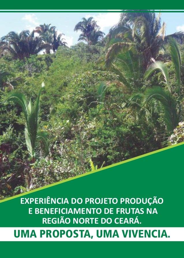 EXPERIÊNCIA DO PROJETO PRODUÇÃO  E BENEFICIAMENTO DE FRUTAS NA  REGIÃO NORTE DO CEARÁ.  UMA PROPOSTA, UMA VIVENCIA.