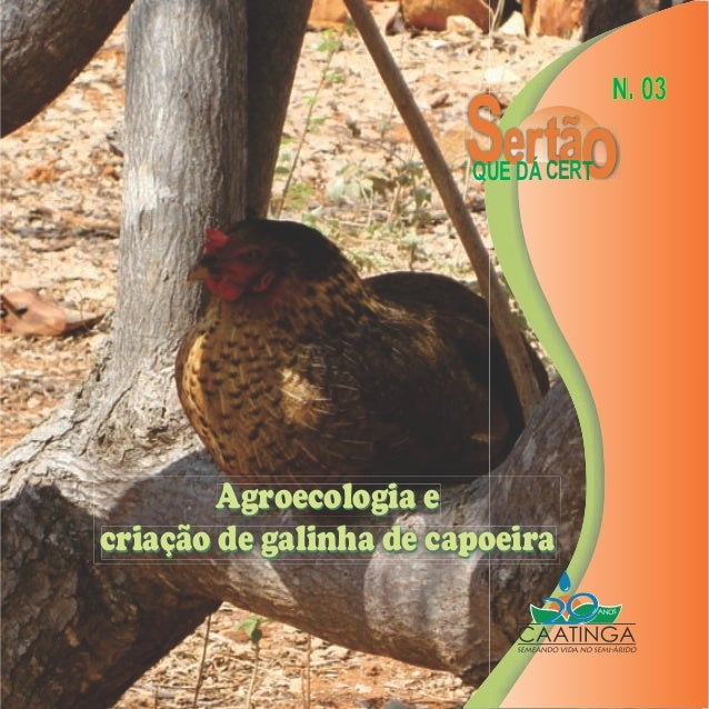 N. 03                          ertão                        QUE DÁ CERT        Agroecologia ecriação de galinha de capoeira