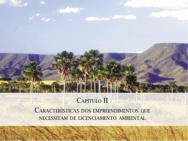 CAPÍTULO IICARACTERÍSTICAS   DOS EMPREENDIMENTOS QUE NECESSITAM DE LICENCIAMENTO AMBIENTAL