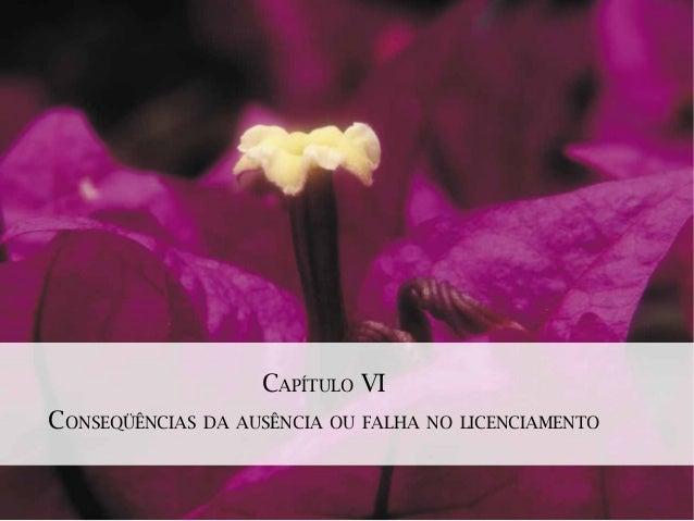 CAPÍTULO VICONSEQÜÊNCIAS DA AUSÊNCIA OU FALHA NO LICENCIAMENTO
