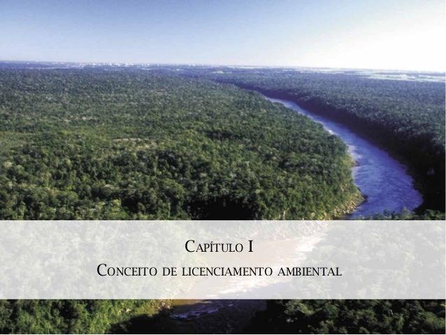 CAPÍTULO ICONCEITO   DE LICENCIAMENTO AMBIENTAL