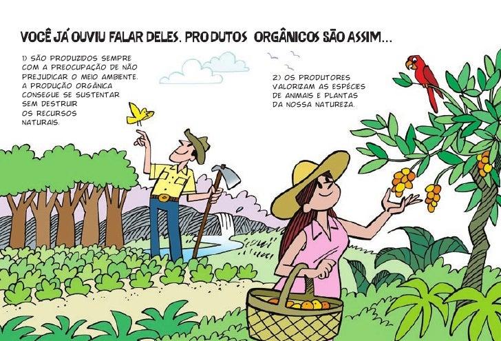1) São produzidos sempre com a preocupação de não prejudicar o meio ambiente.   2) Os produtores A produção orgânica      ...