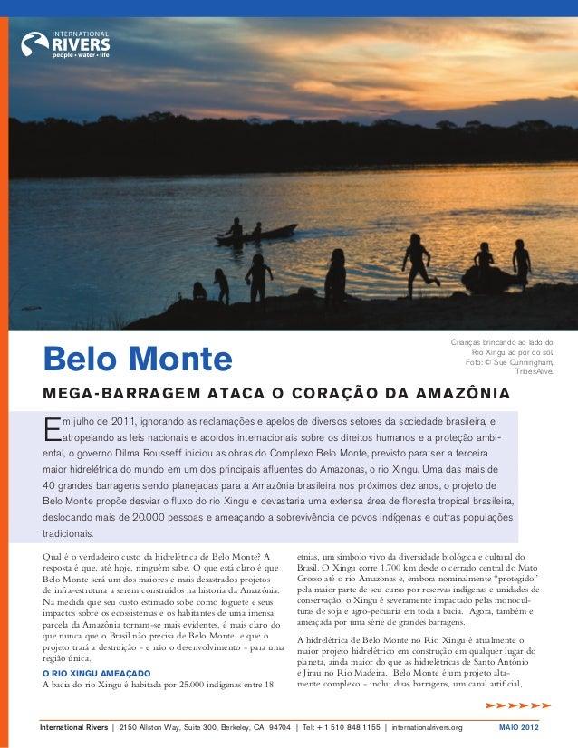 Qual é o verdadeiro custo da hidrelétrica de Belo Monte? A resposta é que, até hoje, ninguém sabe. O que está claro é que ...